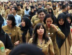 4.523 Pelamar CPNS Agam Lulus Seleksi Administrasi