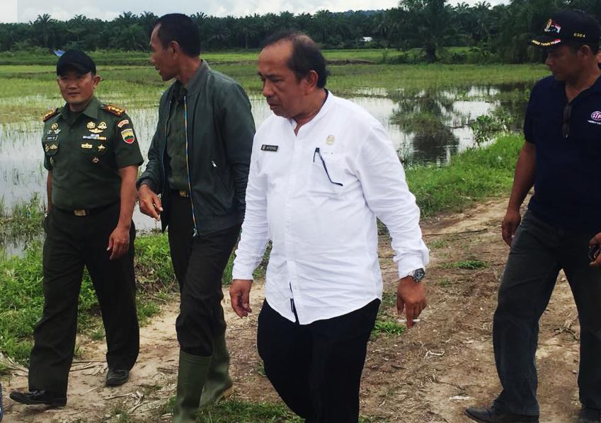 inas Pertanian beserta jajaran TNI melakukan kunjungan untuk melihat langsung pelaksanaan cetak sawah baru tersebut.