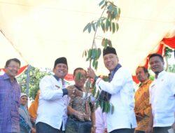Godih Sontiang Berikan Bantuan 400 Batang Bibit Durian Untuk Nagari Sungayang