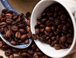 Kopi Arabika Kayumas Berstandar Fair Trade