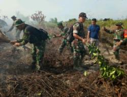 Puluhan Hektare Hutan Produksi Di Pesisir Selatan Terbakar