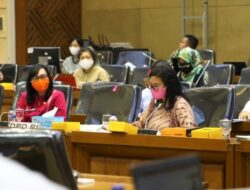 DPD RI: Mandatory Spending Untuk UMKM Penting Dialokasikan dalam RUU Omnimbus Law Cipta Kerja