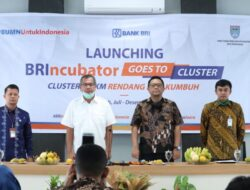 Wali Kota Payakumbuh Resmikan BRIncubator Goes to Cluster
