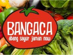 Bangaca (Abang Sayur Jaman Now) Hadir Sebagai Penyedia Jasa Kebutuhan Dapur Online