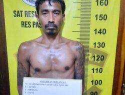 Tanam 23 Batang Ganja di Polybag, Polisi Amankan Seorang Pria di Pasbar