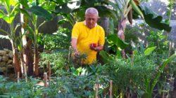 Pessel Punya Potensi Pengembangan Agrowisata