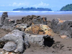 Heboh Harga Karcis, Dinas Pariwisata Padang Sebut Tarif Masuk Pantai Air Manis Dipungut Pemuda Setempat