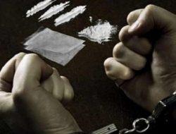 Satresnarkoba Polres Pessel Tangkap 2 Orang Pengedar Narkoba