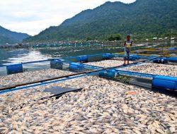 Bupati Agam Minta Masyarakat Serius Dalam Penyelamatan Danau Maninjau