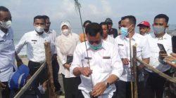 Cegah Abrasi Pemkab Pessel Lakukan Penanaman Cemara Laut